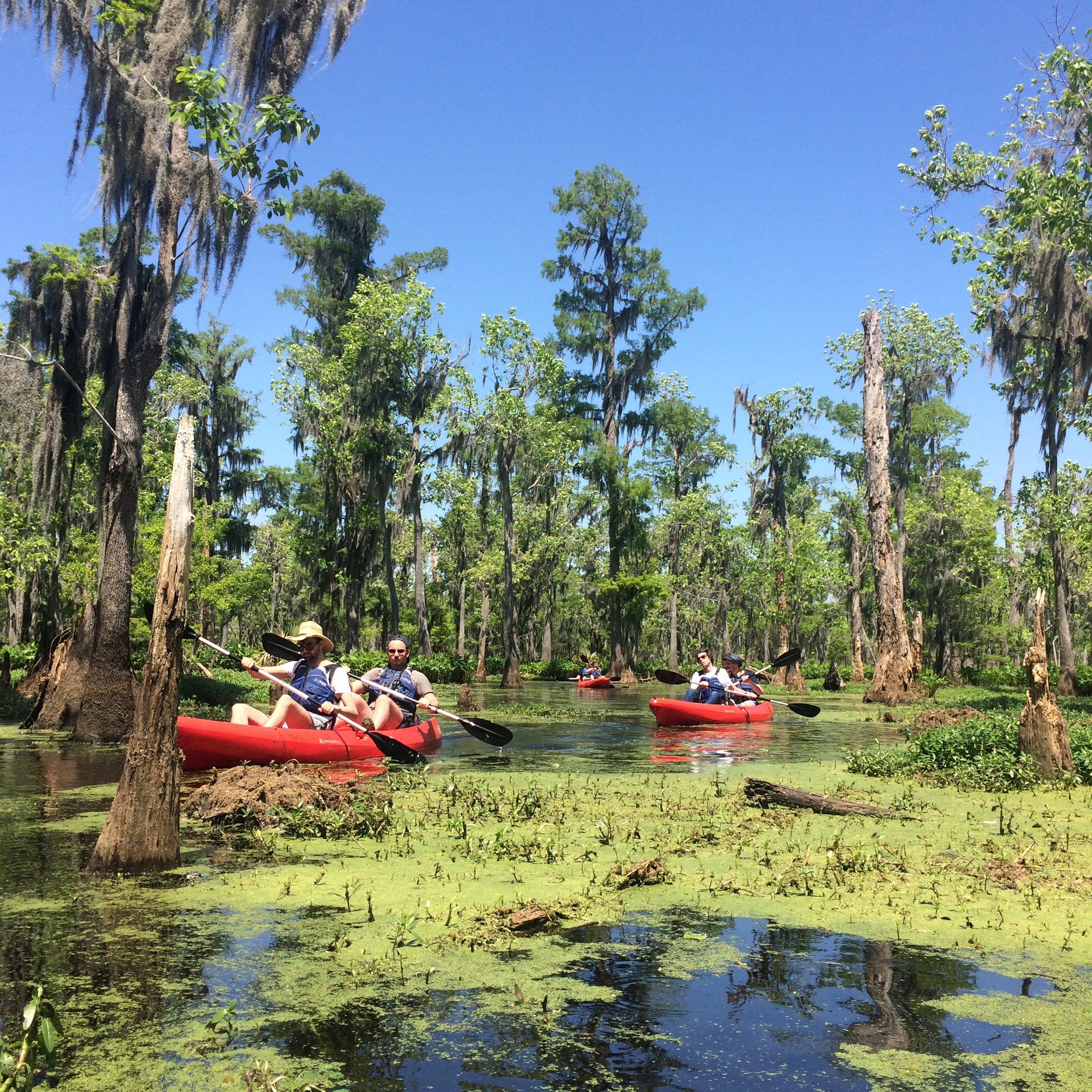 Swamp Tour New Orleans >> New Orleans Kayak Swamp Tour Pearl River La 70452