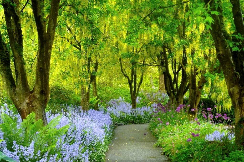 Image result for vandusen botanical garden