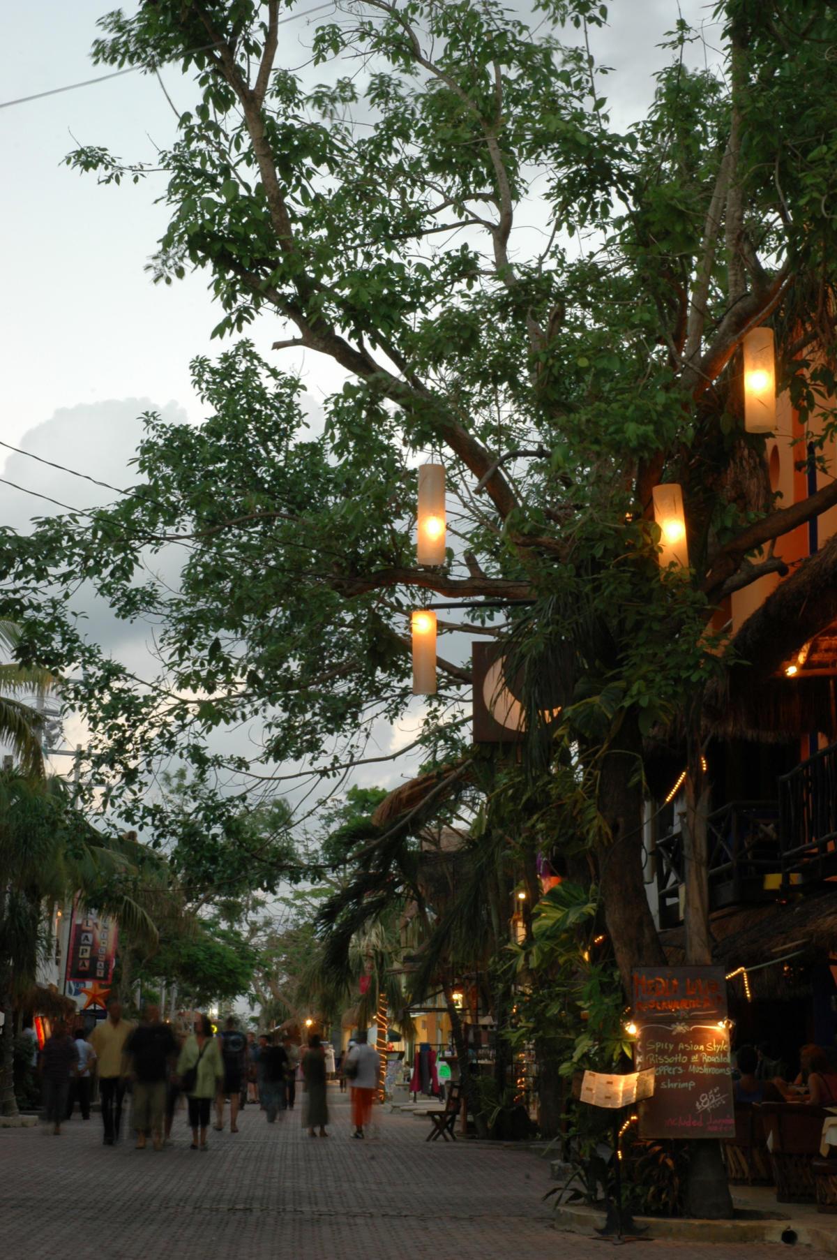 5th Avenue Lanterns