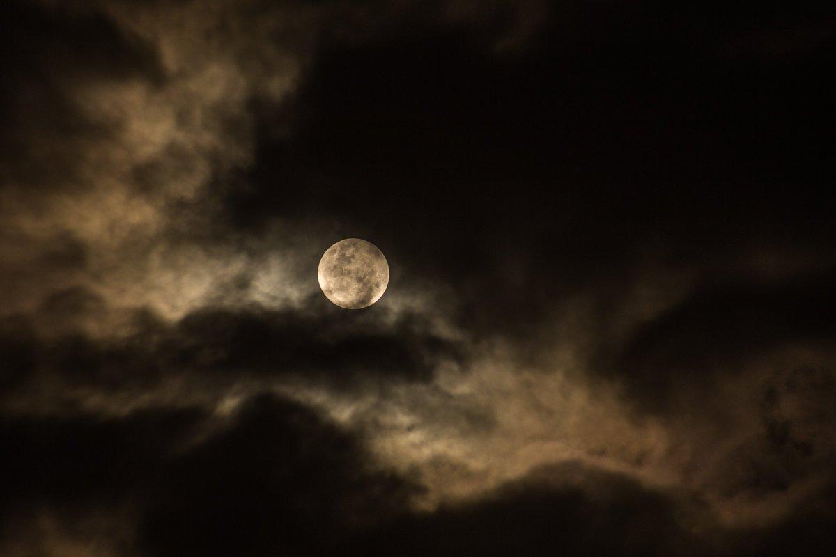 That OC Girl - Full Moon Hike