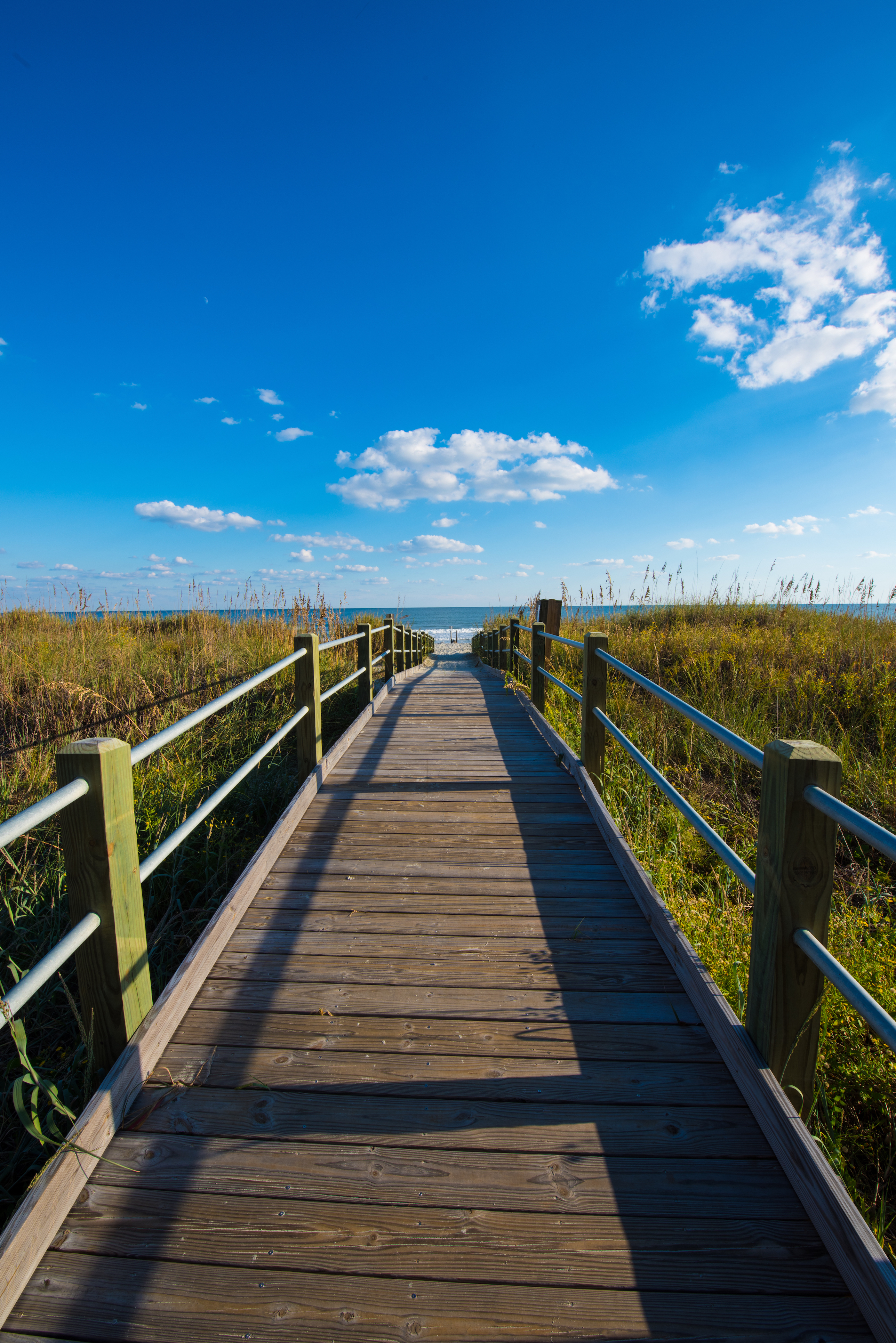 Myrtle Beach A Coastal City In South Carolina: Myrtle Beach Media: New Developments For This Year And Beyond