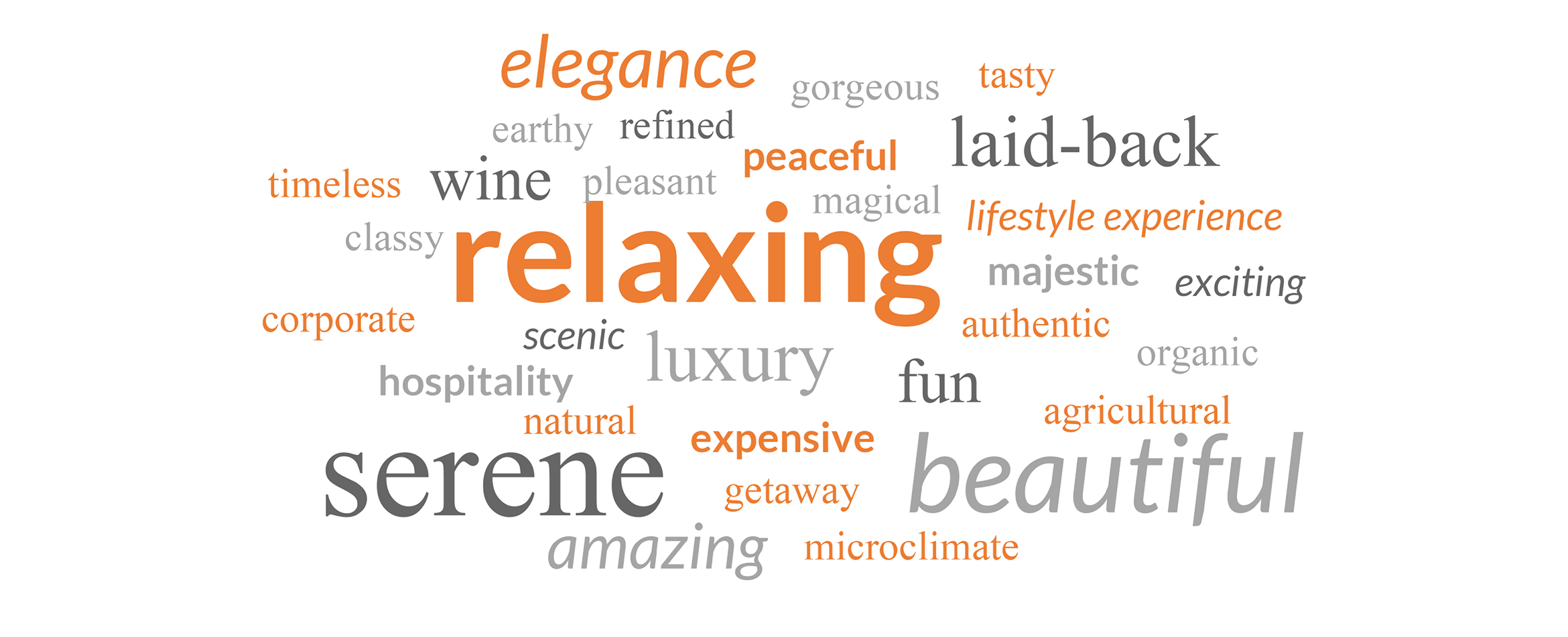 NV Visitor Activities word cloud
