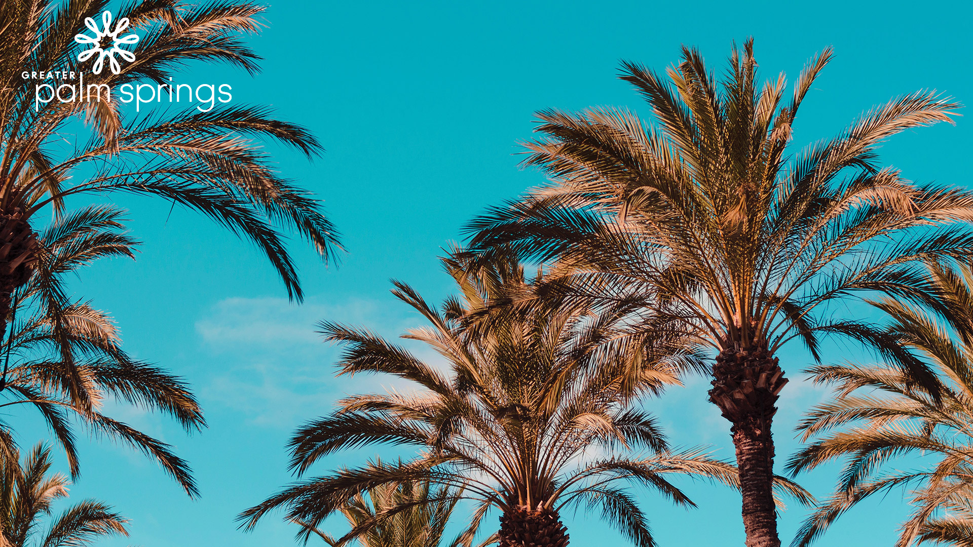 Download Scenic Zoom Backgrounds From Greater Palm Springs