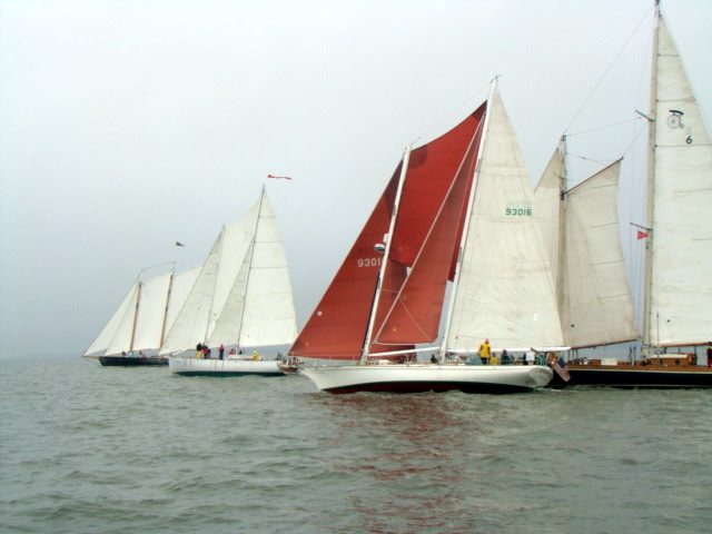 Schooner Race Watch Cruise