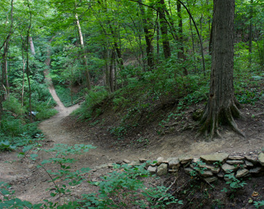 Harbin Park Trail