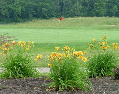 Indian Ridge Flowers Flag