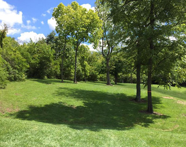 Monroe Community Park