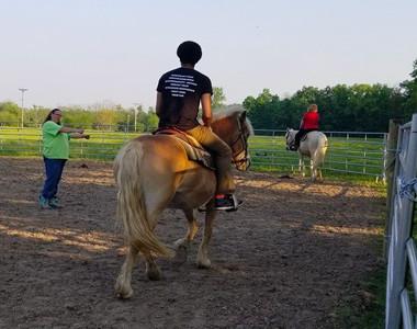 Nation Road Horse Rental Listing 2