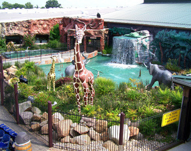 Jungle Jim's International Market Animal Pond