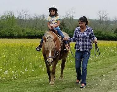 Nation Road Horse Rental listing 3