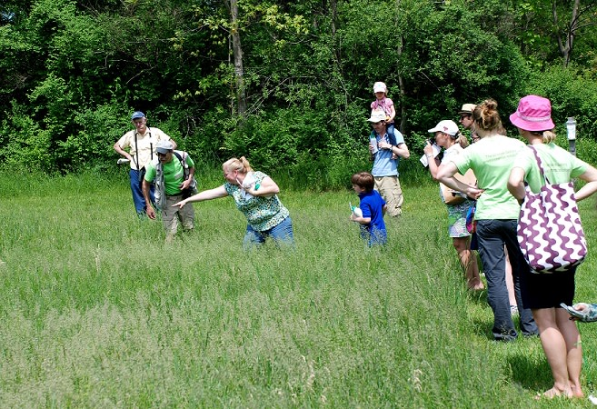 Cary Institute Hosts Butterflies & Skippers Walk
