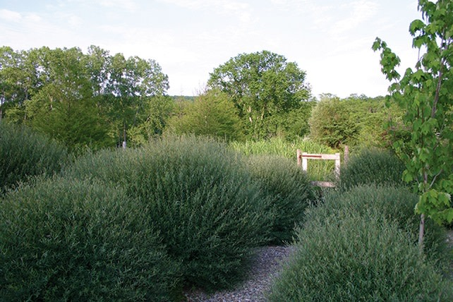The Garden Conservancy Dutchess County Open Days - Tour in Pawling
