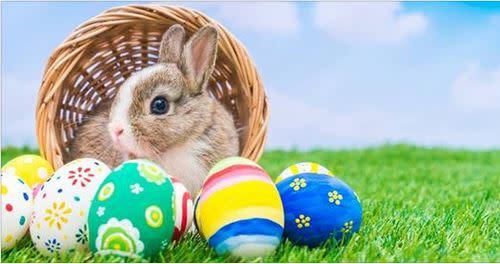 Tymor Park Union Vale Parks & Recreation Host Egg Hunts for ALL