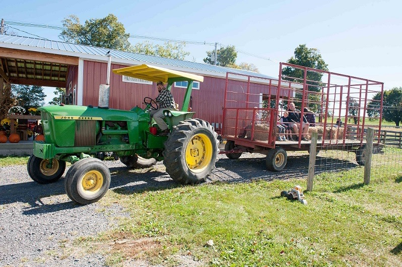 Harlem Valley Farm and Food Alliance Day - Visit Farms for Tours, Food, Drink and More!