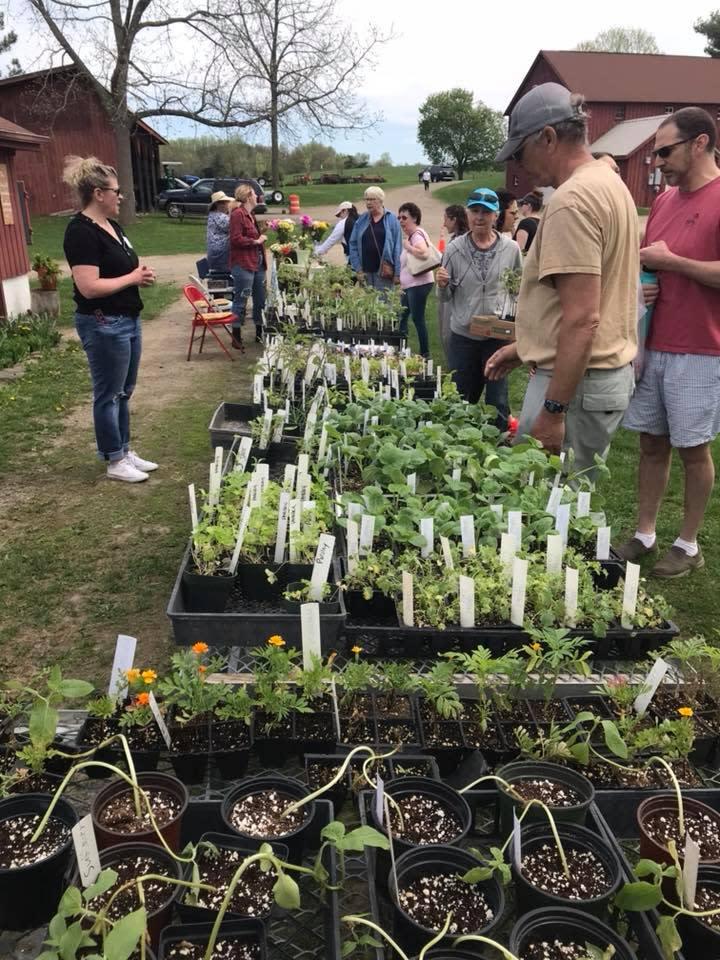 Spring Celebration and Plant Sale at Stony Kill