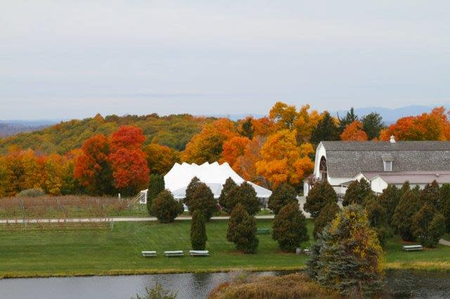 Annual Harvest Party at Millbrook Vineyards & Winery