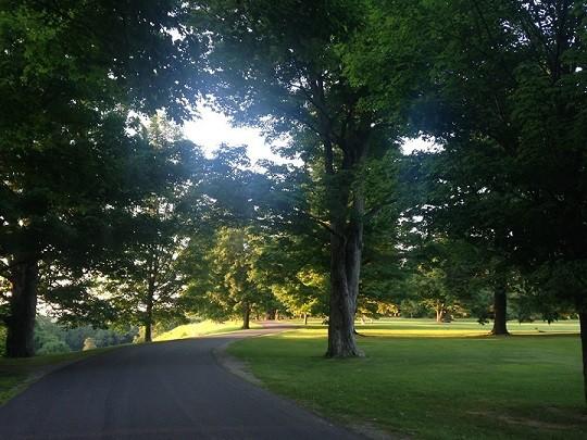 Fall Into Fitness 5K Run/Walk at Vanderbilt Mansion