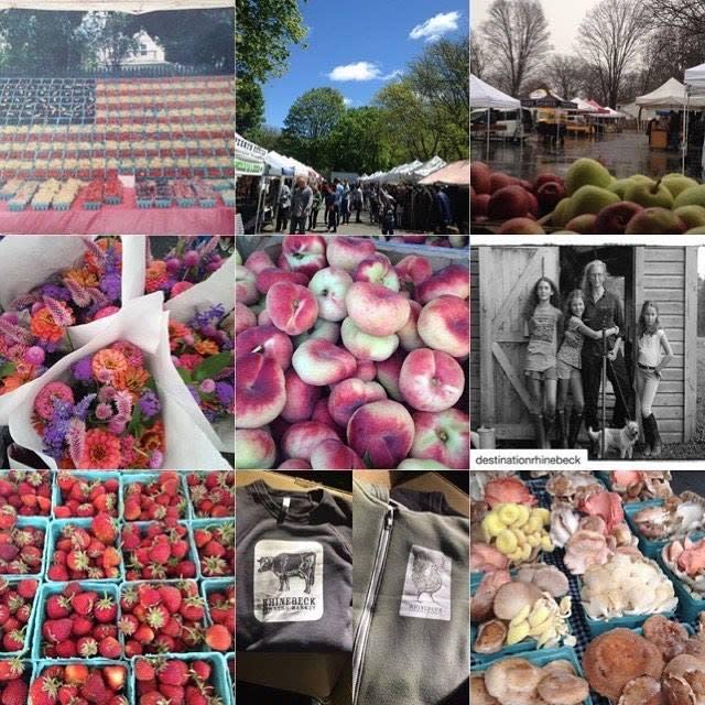 Rhinebeck Farmers Market Begins 25th Outdoor Season!