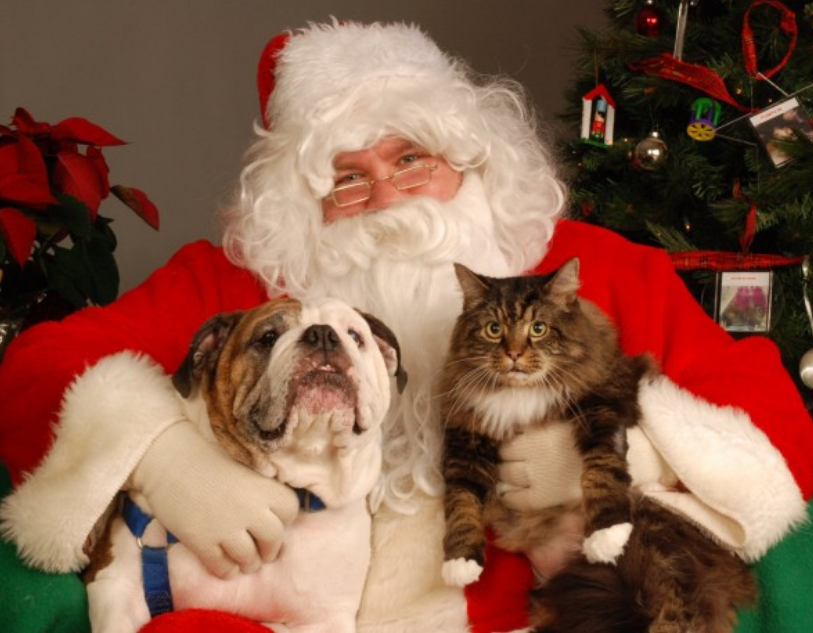 Santa Paws at Poughkeepsie Galleria!