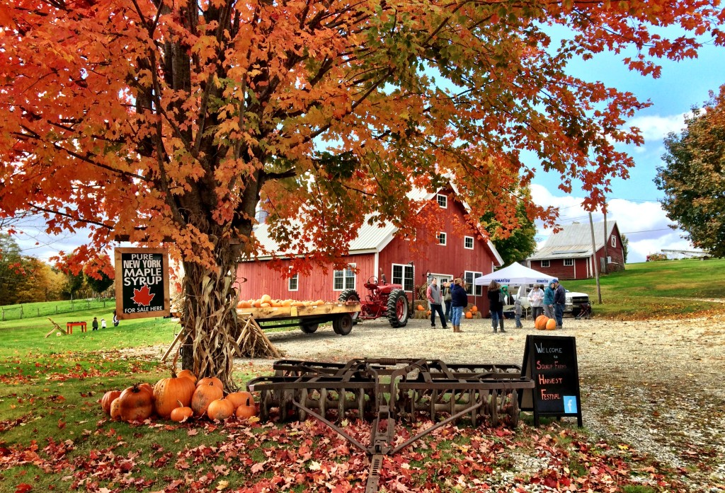 Soukup Farms Harvest Festival