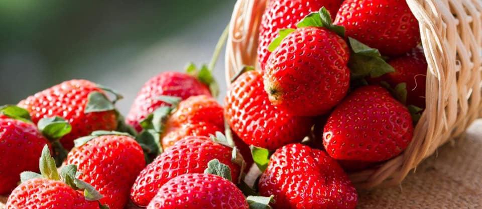 East Fishkill Historical Society Annual Strawberry Festival
