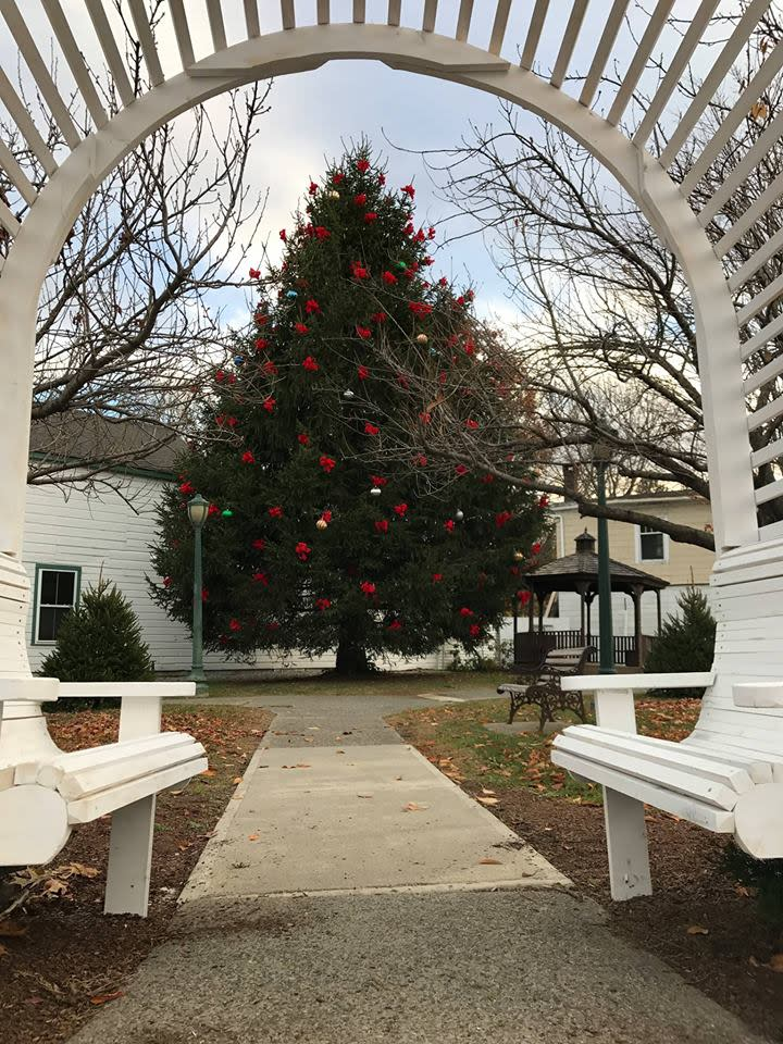Pine Plains 34th Annual Town Decorating Day & Parade of Lights