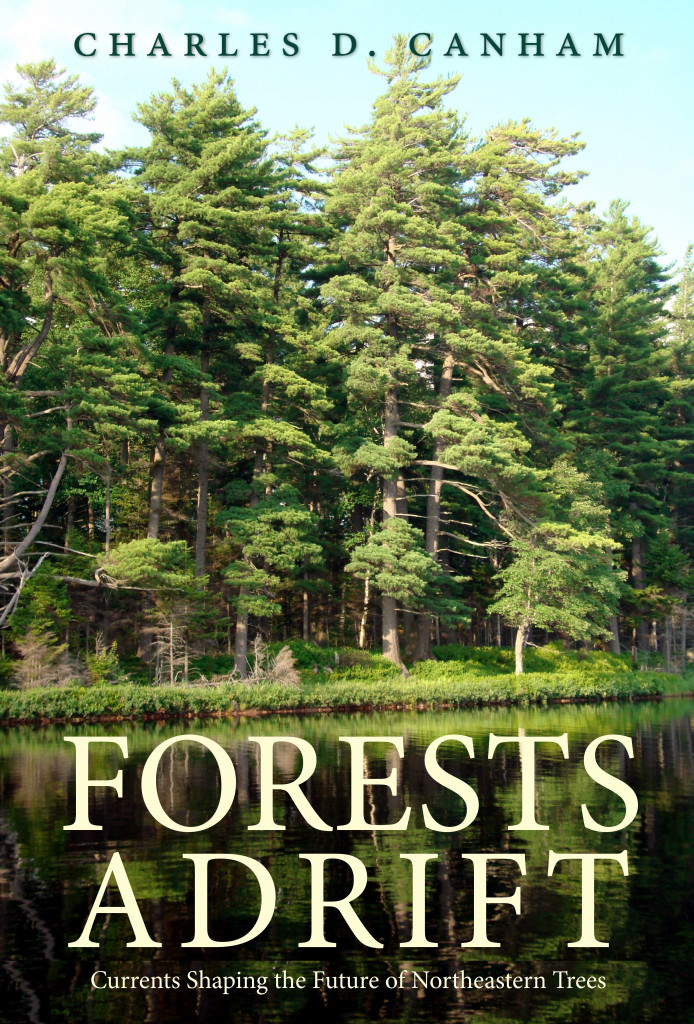 VIRTUAL Lecture:  Forests Adrift. The Future of Northeastern Forests host by the Cary Institute of Ecosystem Studies