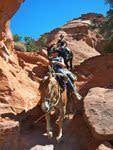 Mecham Outfitters of Southern Utah