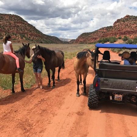 Nipple Mountain Ranch Tours